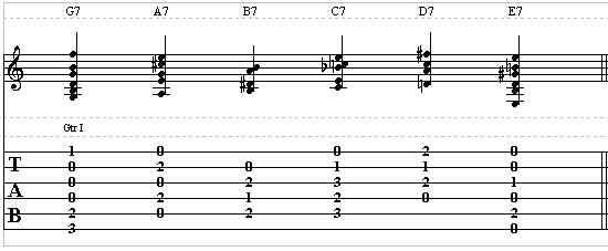 Guitar Lesson For Beginners on Dominant Chords