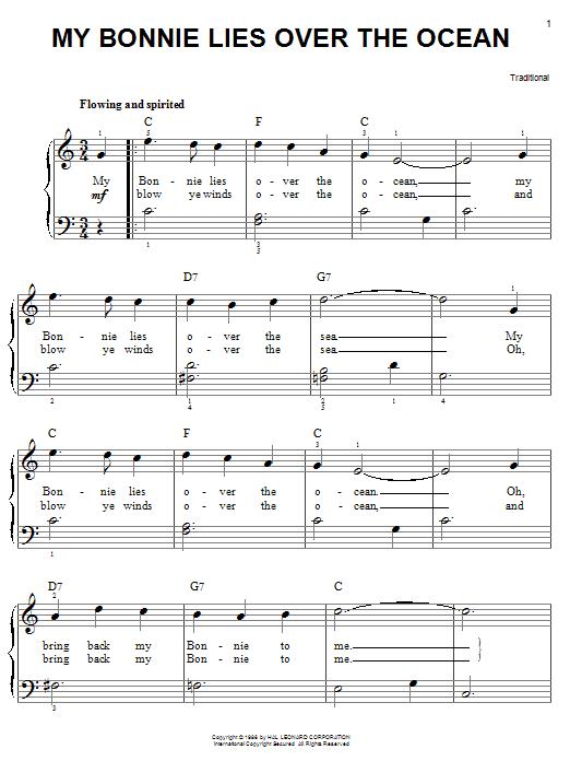 easy-guitar-songs-acoustic_bonnie.png