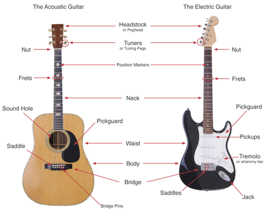 learn-guitar-basics-diagram.png
